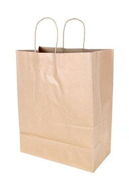 2dayShip Paper Retail Shopping Bags with Rope Handles 13 x 7